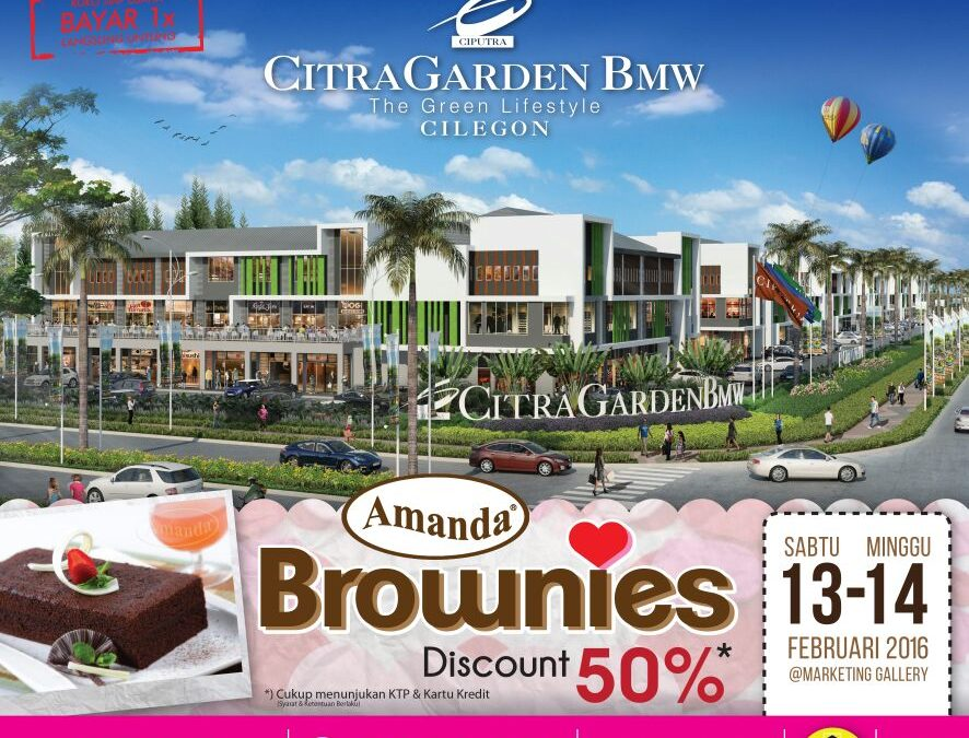 Brownies Day